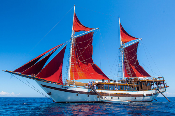 Tiare Cruise another amazing liveaboard designed and built by Cruising Indonesia